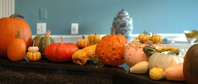 Pumpkin Loot